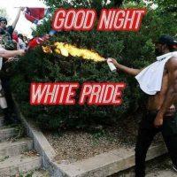 Charlottesville, kytkökset Pohjoismaisiin natseihin ja vastareaktio